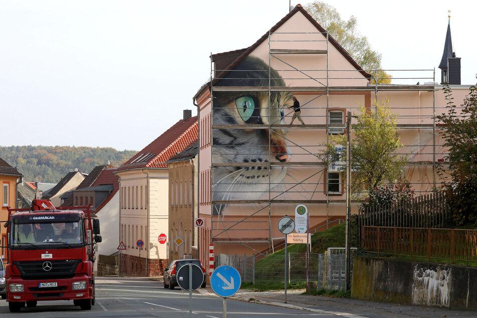 Blickfang in der Altenburger Straße: Ein Tierarzt gab das tierische Werbebild in Auftrag.