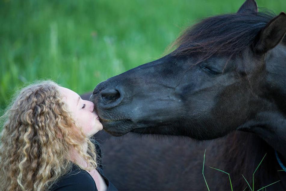 Sie versteht Pferde wie keine andere: Jessica Hübner (18) ist Sachsens  jüngste Pferdeflüsterin.