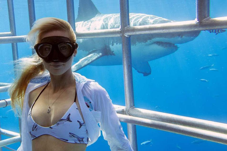 Ramsey schwimmt regelmäßig mit Haien, und das oft auch ganz ohne Käfig.