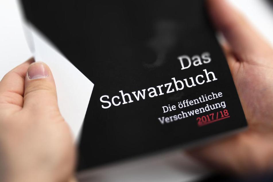 """Im """"Schwarzbuch 2017/18"""" werden die Steuerverschwundungen vorgestellt."""