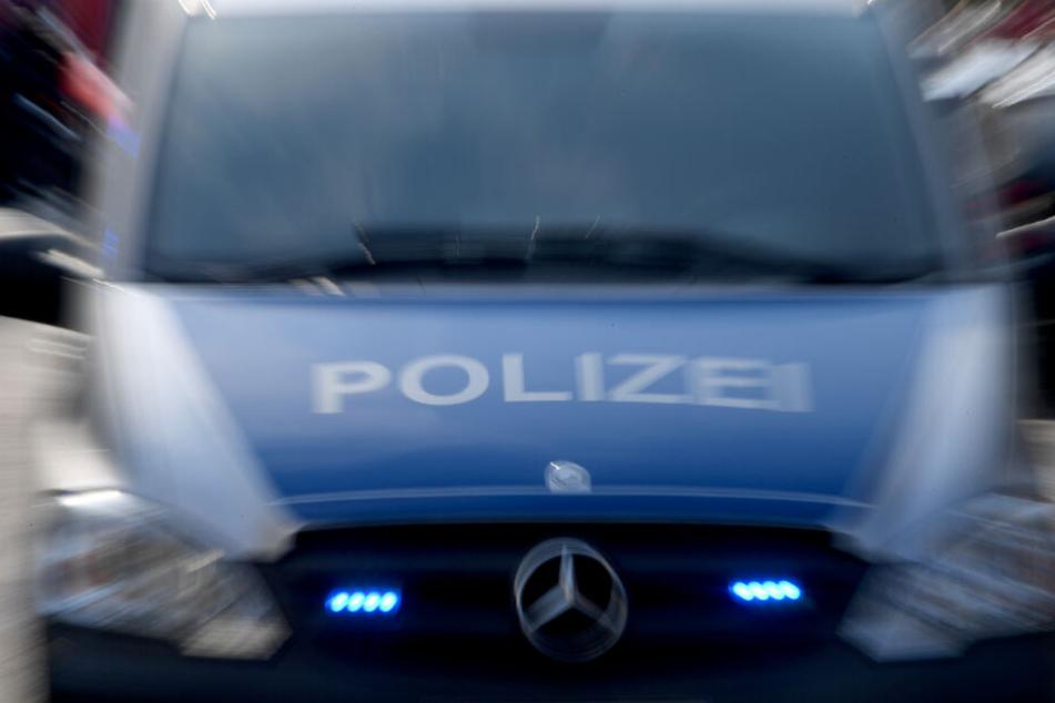 Die Polizisten sahen keinen anderen Ausweg, als den verletzten Fuchs mit ihrem Auto zu überfahren. (Symbolbild)