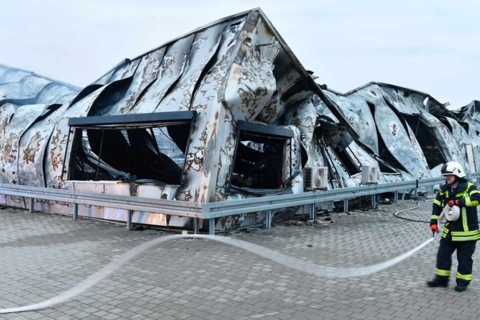 Die Halle stürzte bei dem Brand in sich zusammen. Insgesamt wird der Schaden auf rund zwei Millionen Euro geschätzt.
