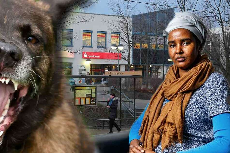 Rechte hetzten in Dresden einen Hund auf sie: Jetzt spricht das Opfer!