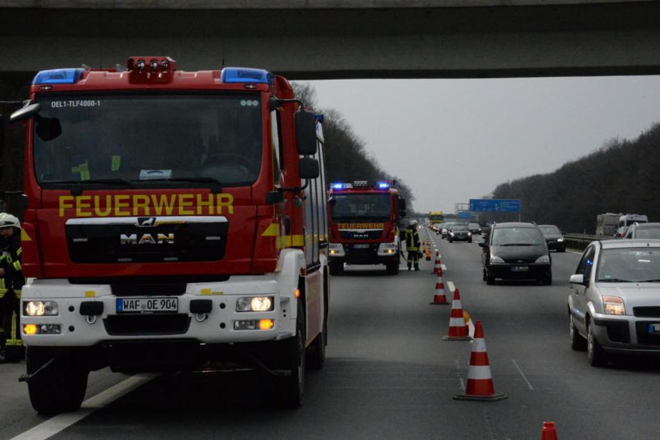 Knapp zwei Dutzend Feuerwehrleute waren vor Ort.