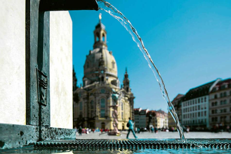Wenn alle Brünnlein fließen: Der Trinkbrunnen auf dem Dresdner Neumarkt lädt zum Erfrischen ein.