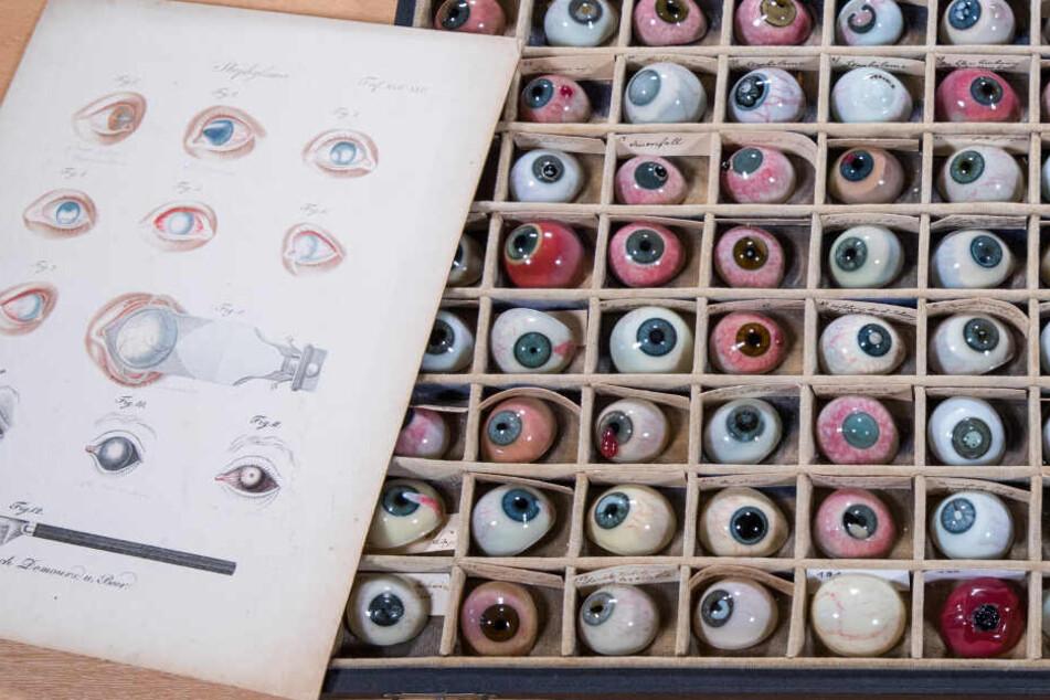 In einem Setzkasten liegt ein Teil der insgesamt 132 Pathologien des historischen Glasaugenarchivs der Augenklinik des Rostocker Universitätsklinikums neben einer Zeichnung mit verschiedenen Augenkrankheiten.