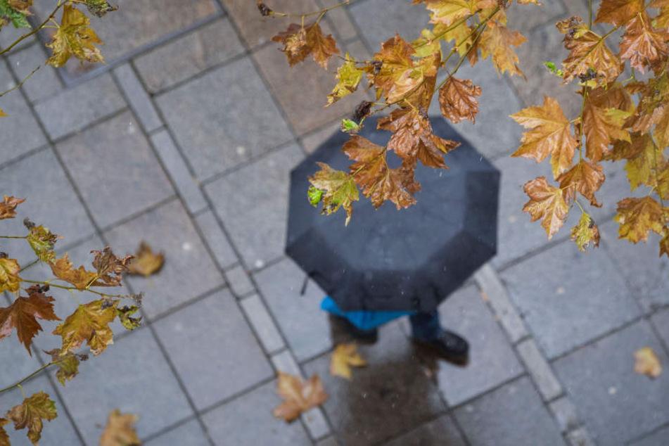 Durch den Regen sind die Straßen und Fußgängerwege oftmals rutschig.