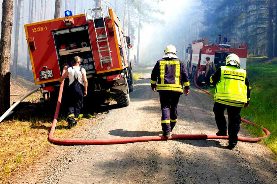 Berlin-Grunewald: 40.000 Quadratmeter große Waldfläche brennt