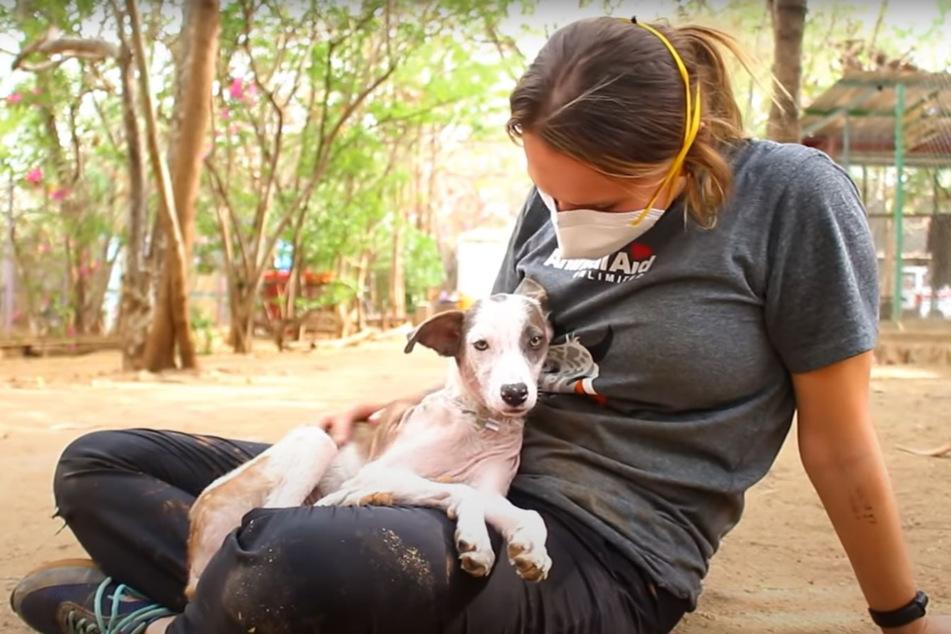 Heute wieder gesund und glücklich: Hündin Jewel mit einer ihrer Pflegerinnen.