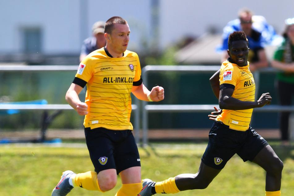 Ex-Dynamos Koné und Duljevic in der sportlichen Krise! Tabellenletzter, Trainer entlassen