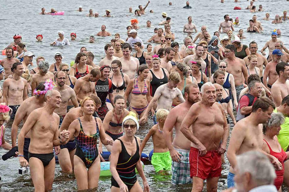 Im vergangenen Jahr stürzten sich so viele Elbeschwimmer (1781) in den Fluss wie nie zu vor. Können die Dresdner das bei der 22. Auflage in diesem Jahr toppen?