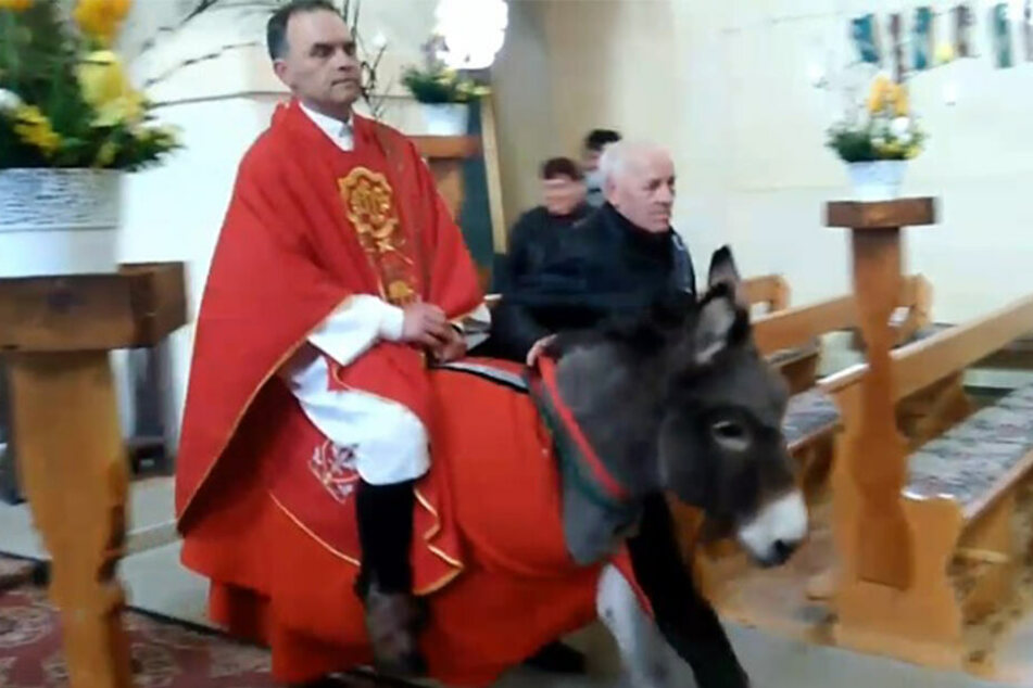 Wegen Tierquälerei? Internetnutzer fordern: Priester soll gekreuzigt werden