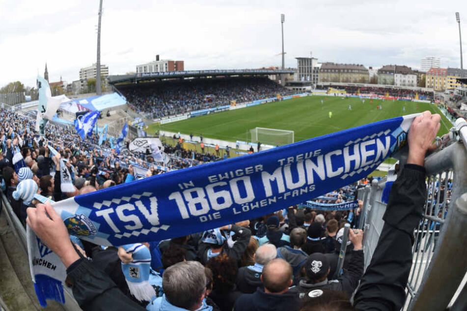 Das Grünwalder Stadion ist das Zuhause des TSV 1860 München.