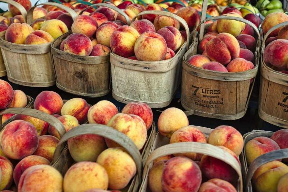 Pfirsiche belegen Platz 4 der beliebtesten Obstsorten der Deutschen