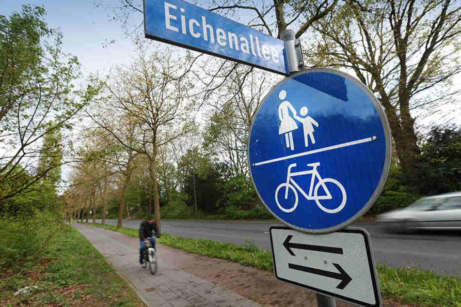 Ein Gericht in Minden muss entscheiden, ob Radfahrer hier zwischen Straße und Radweg wählen dürfen.