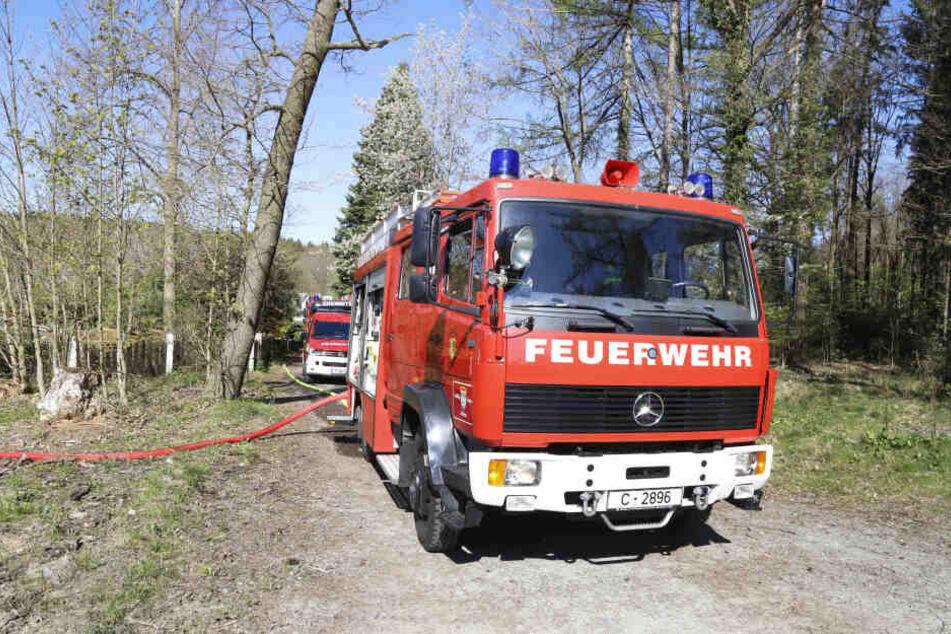 Die Chemnitzer Feuerwehr musste zu einem Waldbrand in Adelsberg ausrücken.
