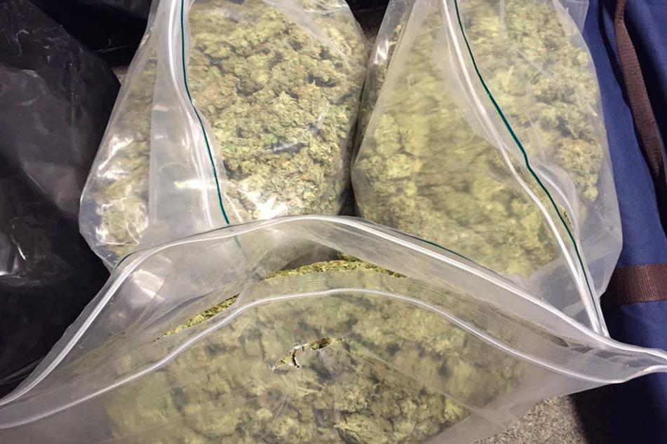 Insgesamt 43 Pakete mit insgesamt fast 10 Kilo Marihuana wurden gefunden.