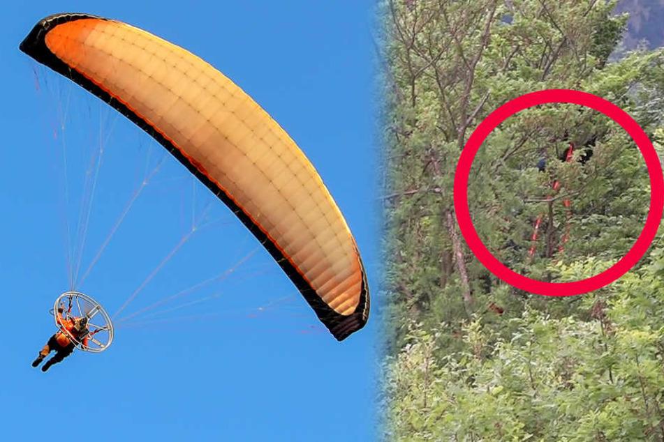 Der Flug der Paragliderin endete in einer hohen Baumkrone (rote Markierung).
