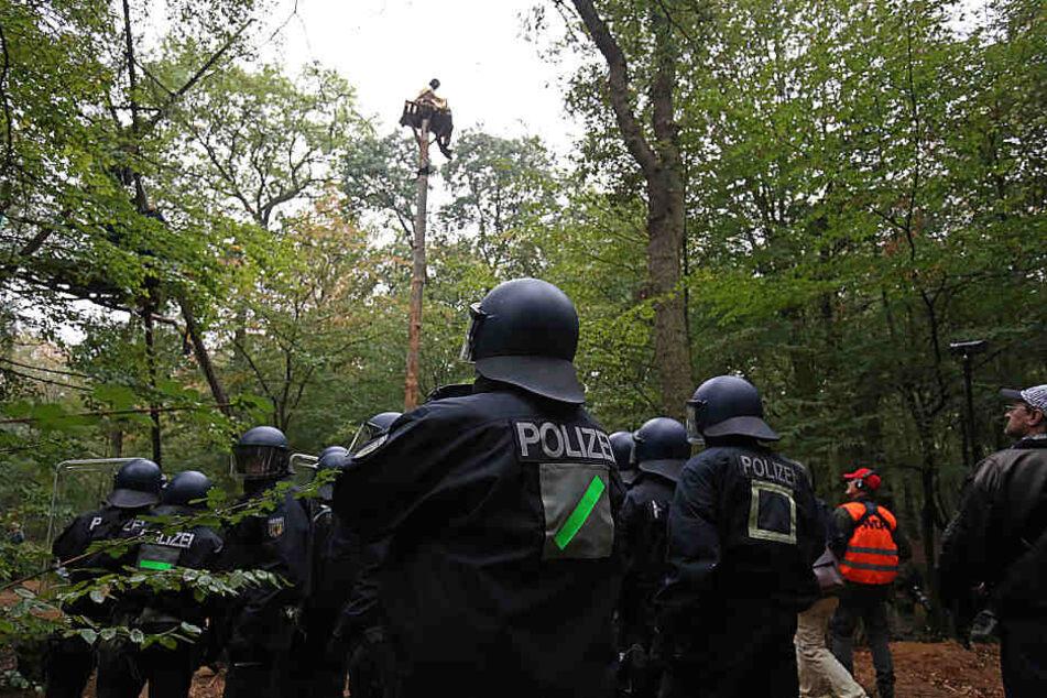 Kletterausrüstung Forst : Hambacher forst people at grossdemo u navva