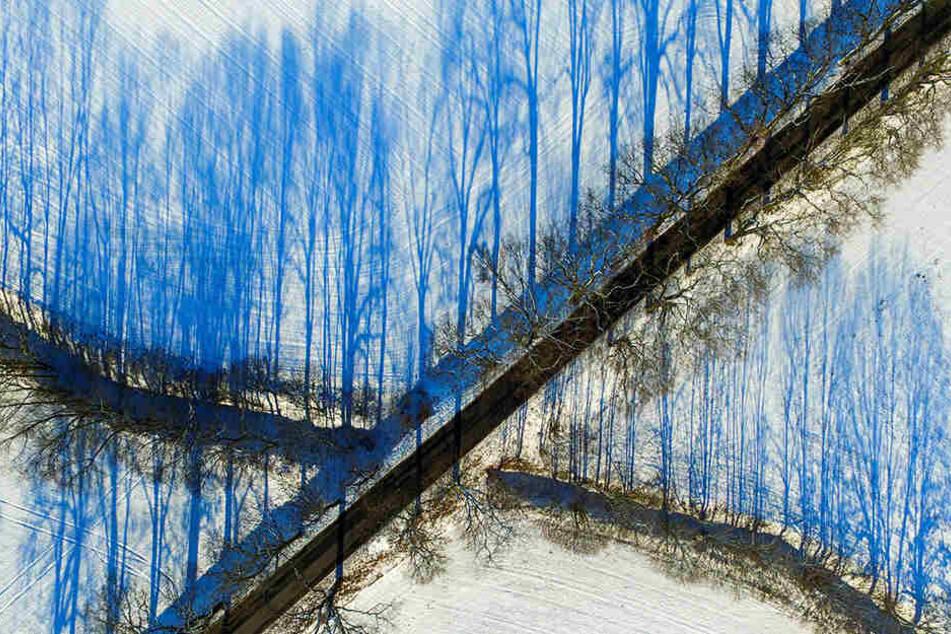 Patrick Pleul schoss diese spektakulären Bilder mit seiner Drohne.