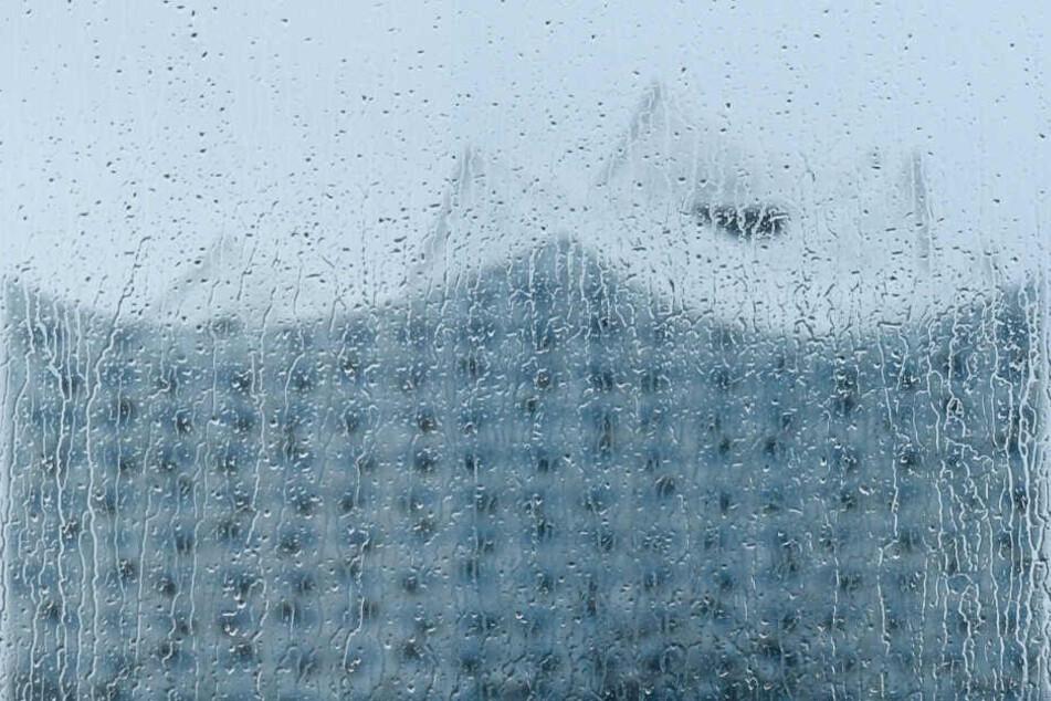 Die wenigsten Hamburger werden beim Blick aus dem Fenster die Elbphilharmonie sehen können, doch Regentropfen dagegen schon.