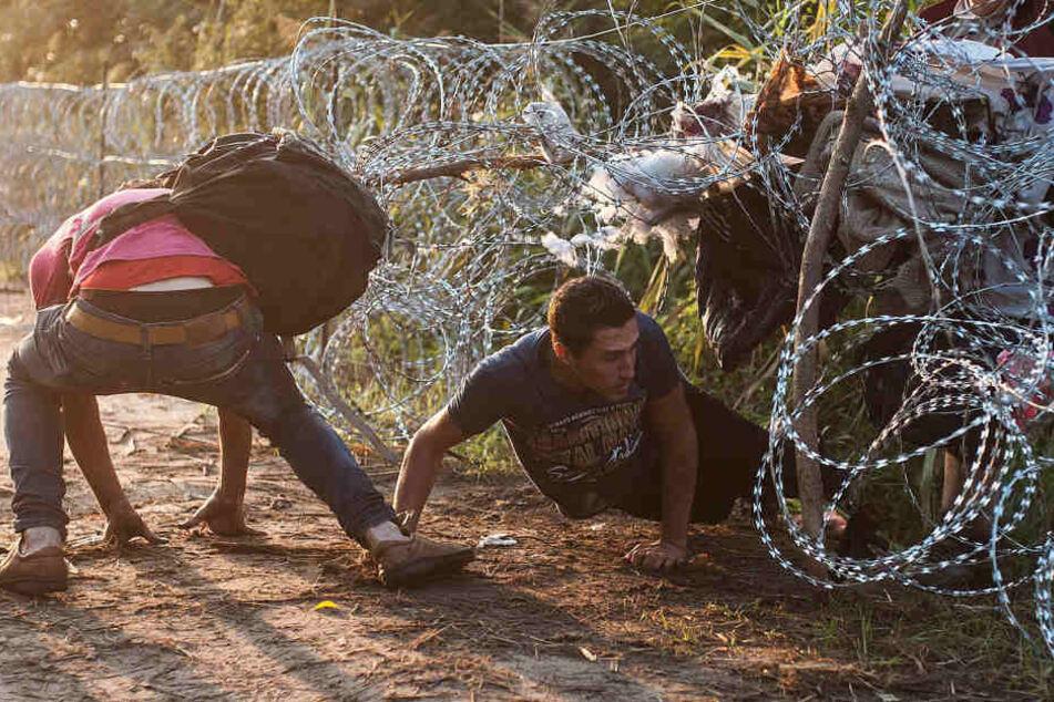 60 Millionen Menschen sind weltweit auf der Flucht. Nur die wenigsten drängen  nach Europa.