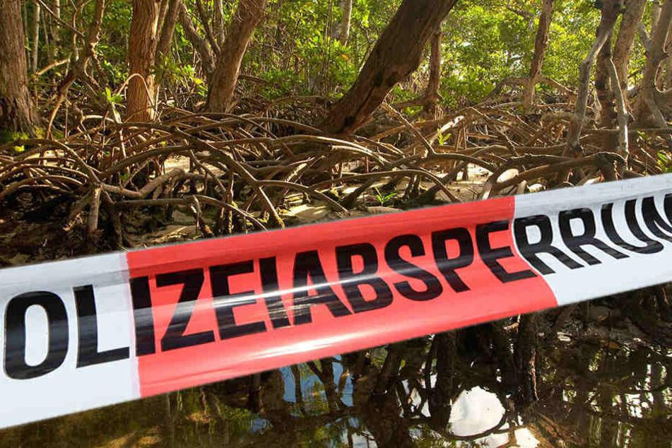 Die Leiche wurde in einem sumpfigen Gebiet gefunden. (Symbolbild)