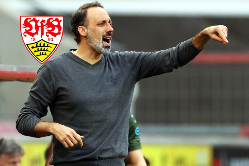Matarazzo: Ärger in VfB-Führung darf keine Berührung mit Team haben