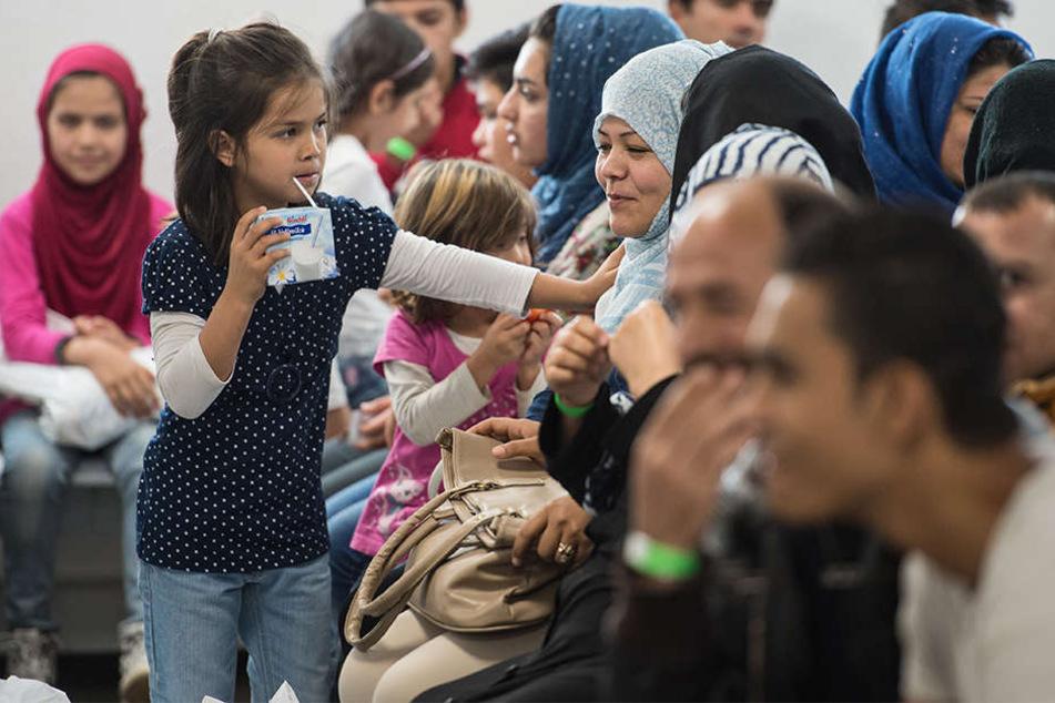 Insgesamt rechnet Paderborn 2016 mit rund 700 Flüchtlingen (Symbolbild).