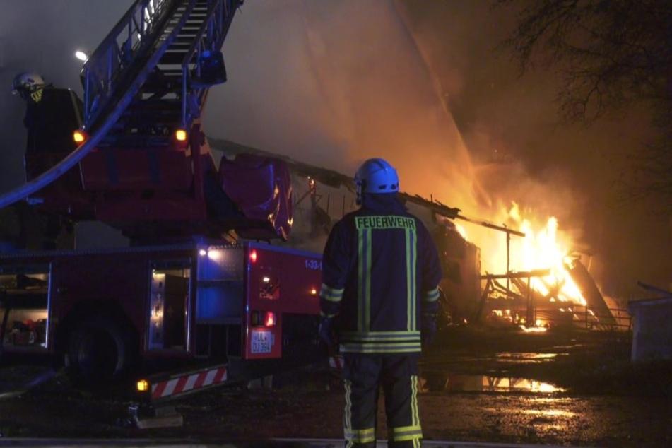 Der Stall brannte komplett ab.