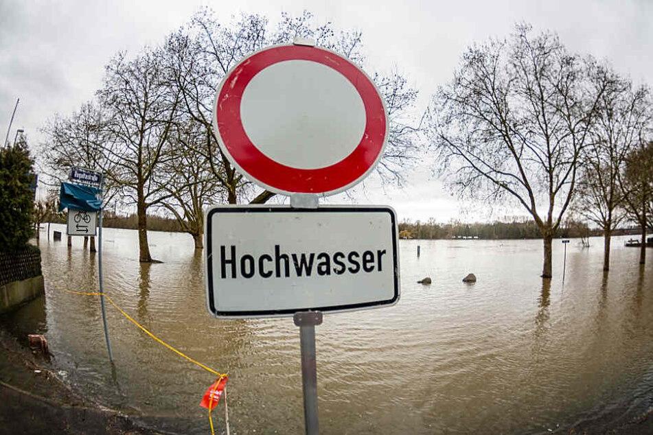 In Wiesbaden-Biebrich ist der Rhein am Mittwoch über die Ufer getreten.