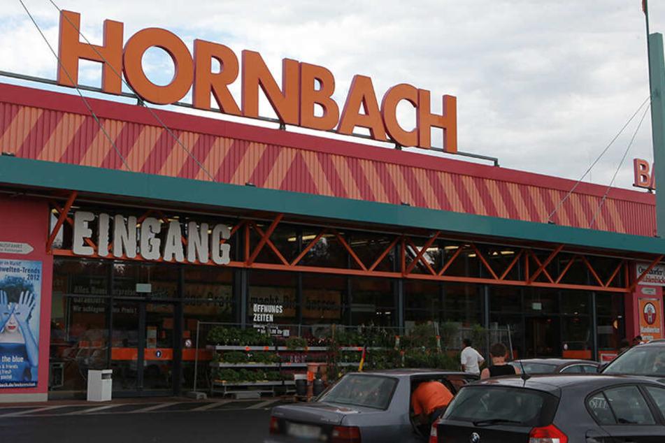 Die Pflanzen wurden im Dresdner Hornbach geklaut.