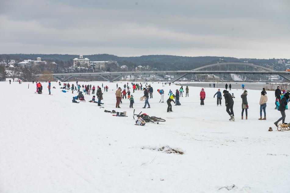 Zwischen Albert- und Waldschlößchenbrücke (Neustädter Seite) erfreut sich eine natürliche Eisfläche zunehmend großer Beliebtheit.
