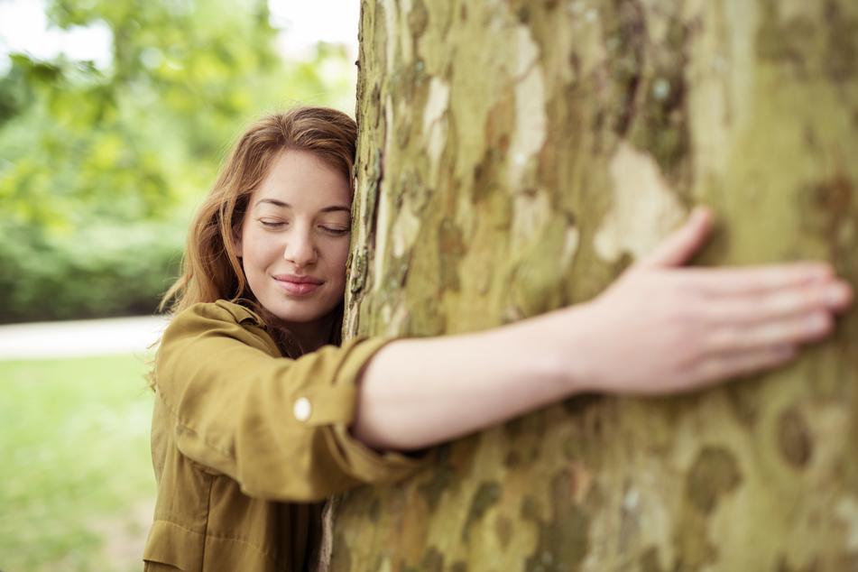 Entspannung pur könnt Ihr beim Waldbaden finden.