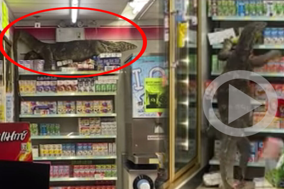 Godzilla shopping at a 7-Eleven: Incredible footage of giant lizard goes viral