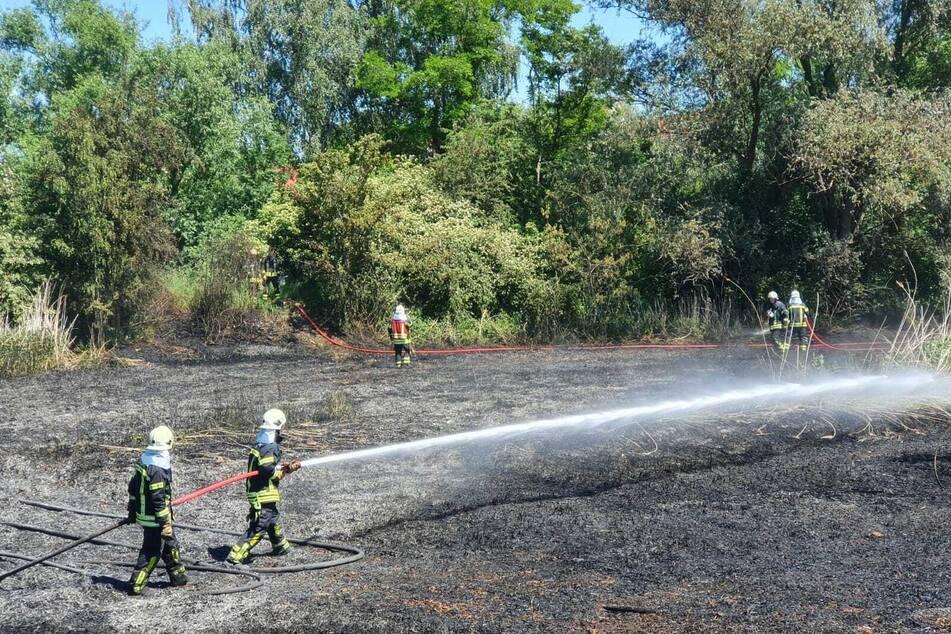 Die Feuerwehrleute löschten das Feuer im ausgetrockneten See.