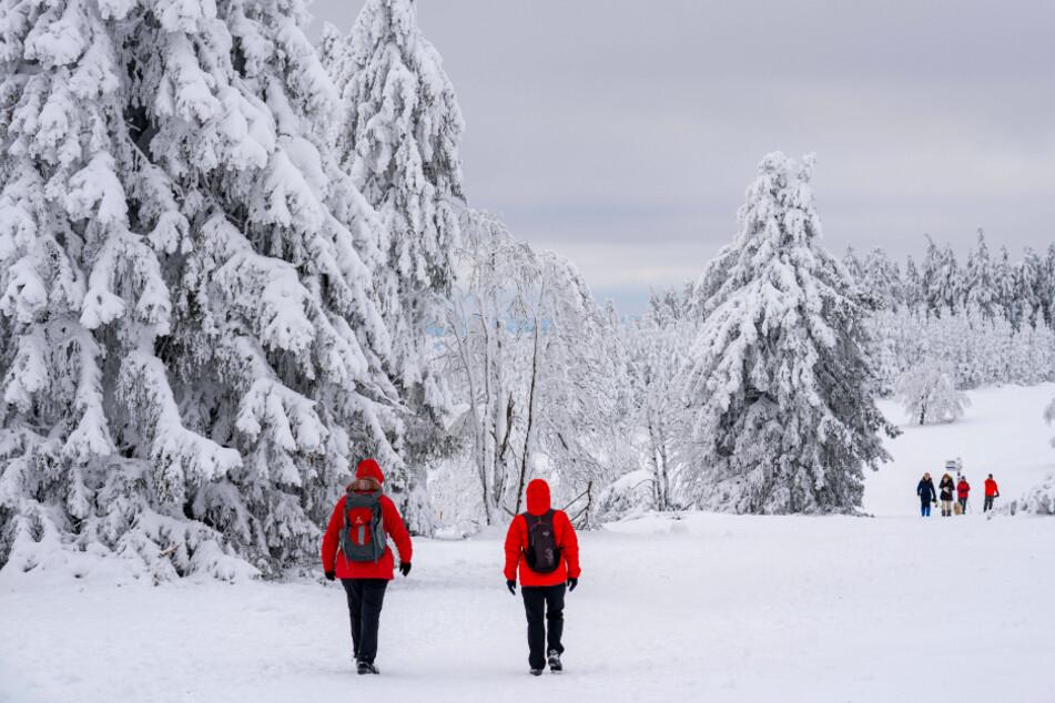 Für Winterfreunde - ob zu Fuß oder auf Skiern - wird der heutige Sonnabend in Sachsen ideal.