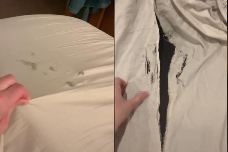 """Frau wundert sich über eklige Löcher im Bett: """"Hat noch wer dieses Problem?"""""""