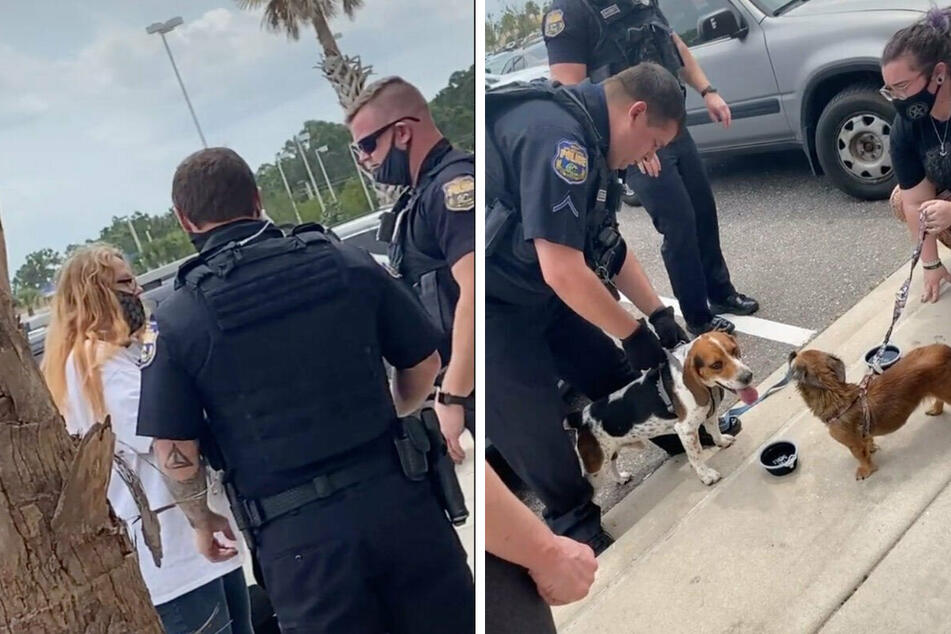 Two trapped dogs are rescued, but the owner's reaction is shocking millions on TikTok