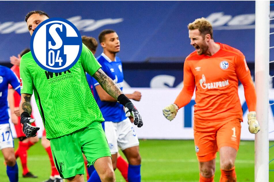 """Schalke 04 steht von den Toten wieder auf: Knappen nach Sieg """"brutal glücklich""""!"""