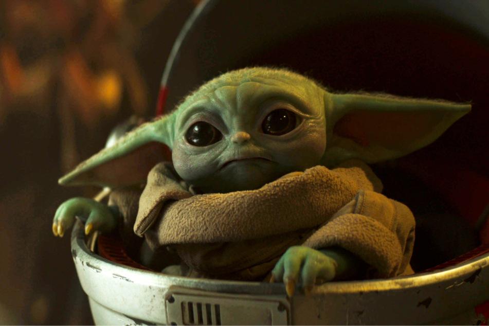 Wo kommt Baby Yoda her? Din Djarin ist auf der Suche nach Antworten.