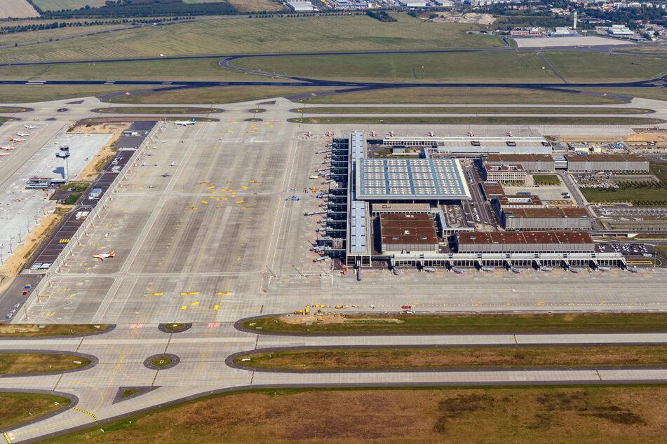 Durch den Bau des BER ist eine größere Bodenfläche versiegelt worden. Daher hat die Berliner Flughafengesellschaft für eine Gesamtfläche von rund 500 Hektar Ausgleichs- und Ersatzmaßnahmen um den Airport angelegt.