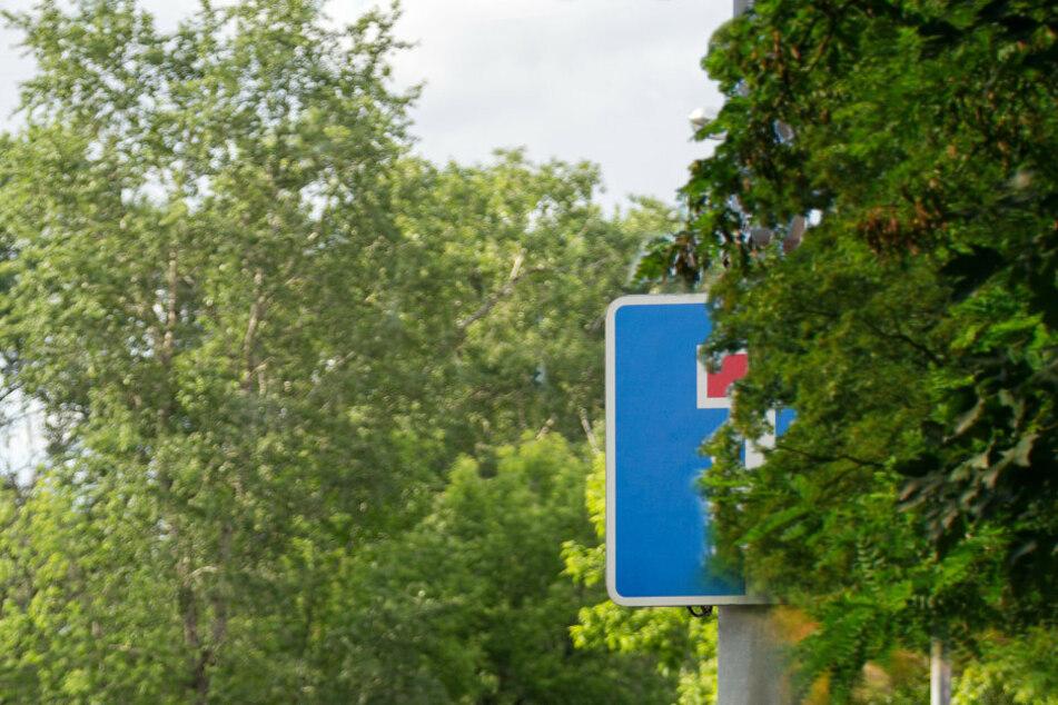 Zoff überm Gartenzaun: Hausbesitzer müssen auf ihre Bäume und Sträucher achten