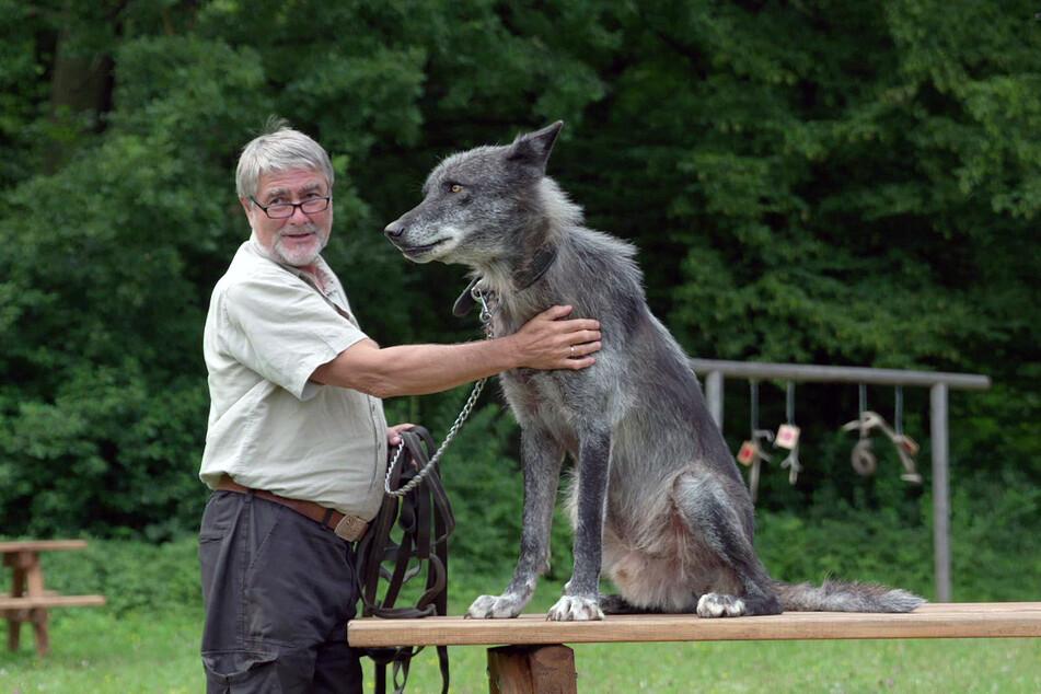 Kurt Kotrschal ist Verhaltensforscher an der Universität Wien und erklärt in der Doku die Geschichte der Beziehung zwischen Wolf und Mensch.