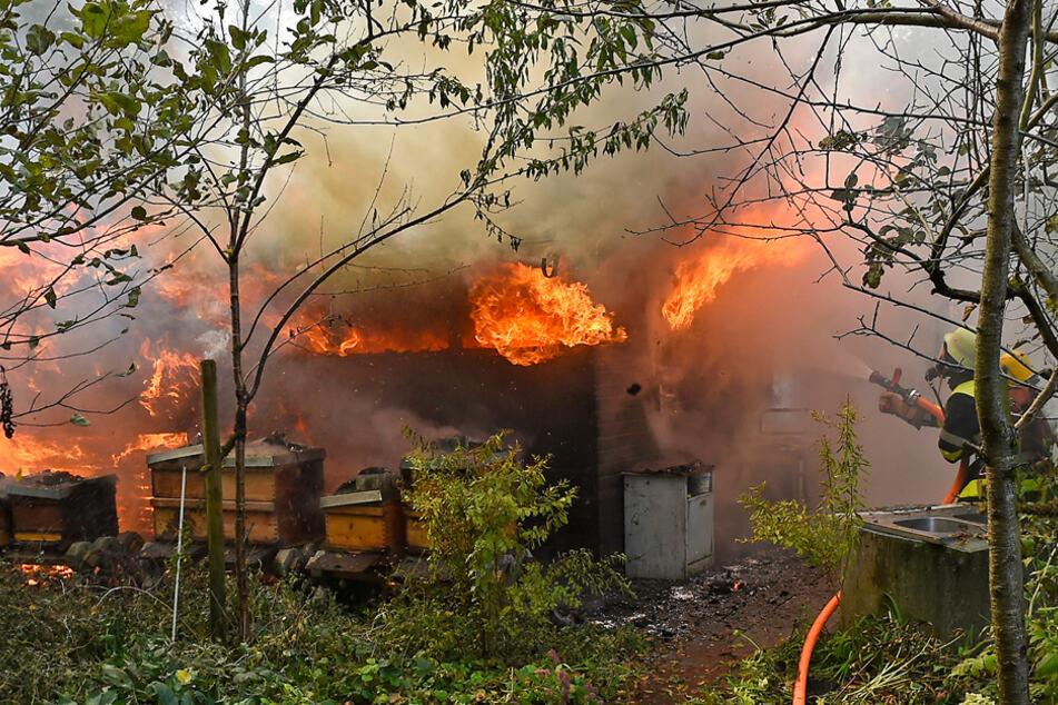 Brennende Gasflasche und sechs Bienenvölker: Feuerwehr verhindert Schlimmeres