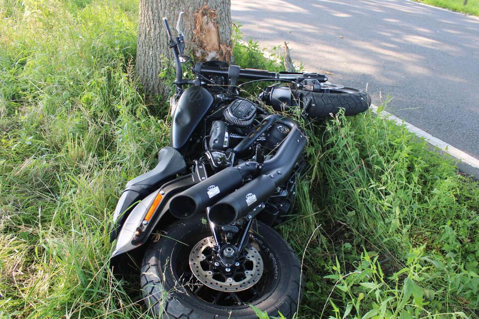 Ein 30-Jähriger ist am Dienstag nach einem Ausweichmanöver mit seiner Harley Davidson gegen einen Baum geprallt.
