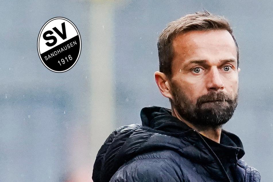 SV Sandhausen zieht schon wieder die Reißleine und entlässt Trainer Michael Schiele!