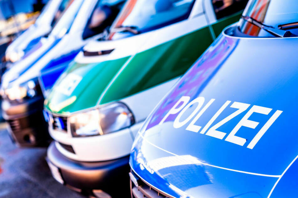 Mehrere Polizeiwagen stehen auf einem Gelände. (Symbolbild)