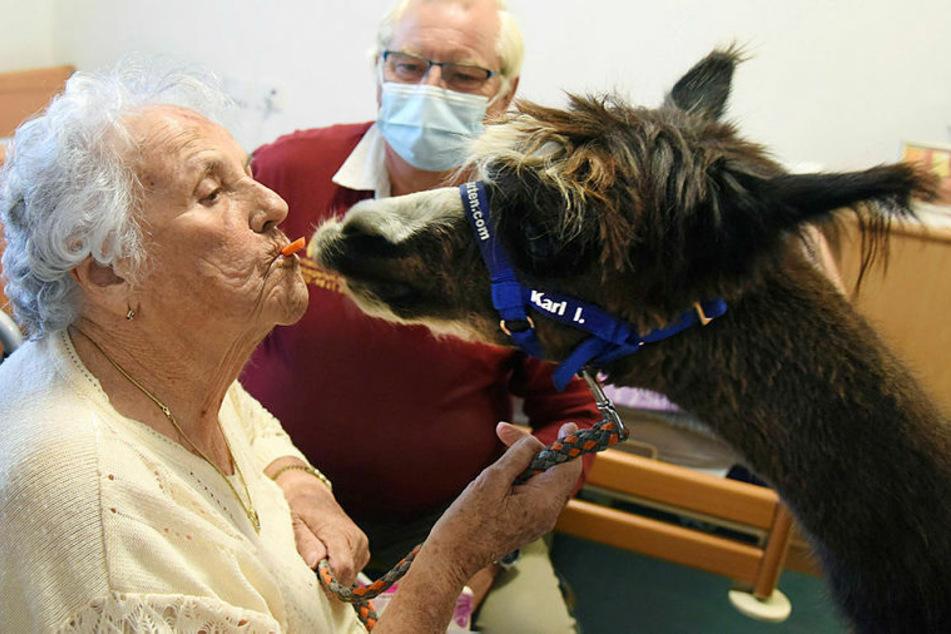 Mit Möhrchen im Mund wartet Lia Börner (91) auf eines Kuss des tierischen Therapeuten, Karl I. (5).