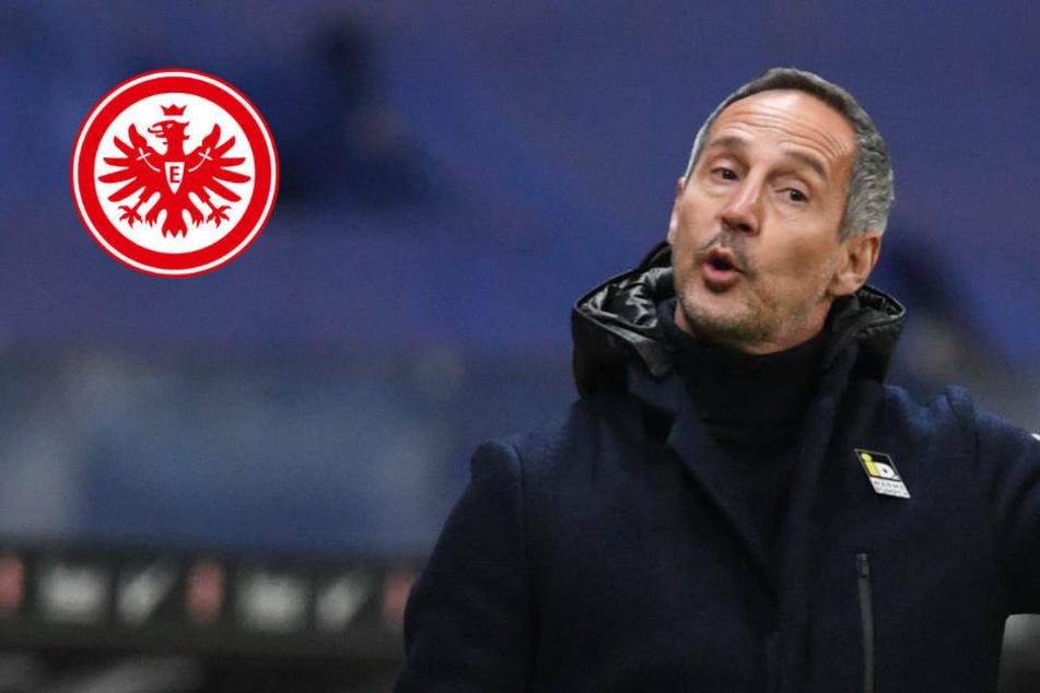 """""""Kirche im Dorf lassen"""": Eintracht-Coach Hütter warnt vor Euphorie"""